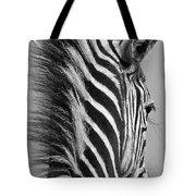 Zebra Baby Tote Bag