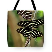 Zebra Butterflies Hanging On Tote Bag