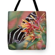 Zebra Butterfly With Blue Eyes Tote Bag