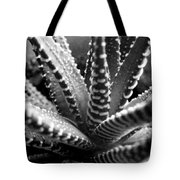 Zebra Cactus Bw Tote Bag