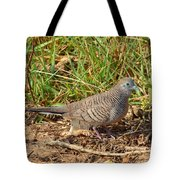 Zebra Dove Tote Bag