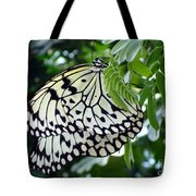 Zebra In Disguise Tote Bag