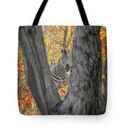 Zebra In Mopane Textures Tote Bag