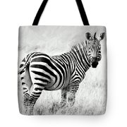 Zebra In The African Savanna Tote Bag