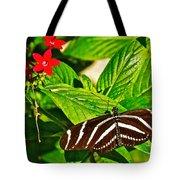 Zebra Longwing Butterfly In Living Desert Zoo And Gardens In Palm Desert-california  Tote Bag