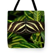 Zebra Longwing Butterfly On A Sanchezia Nobilis Tropical Plant Tote Bag