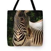 Zebra Portrait Tote Bag