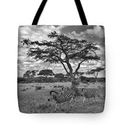 Zebra Running Through Savannah Tote Bag