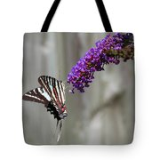 Zebra Swallowtail Butterfly 2 Tote Bag