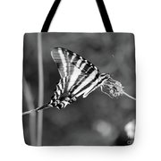 Zebra Swallowtail Butterfly Black And White Tote Bag