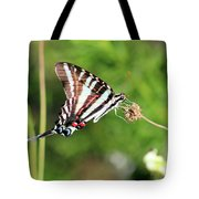 Zebra Swallowtail Butterfly In Garden 2016 Tote Bag