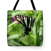 Zebra Swallowtail Butterfly In Green Tote Bag