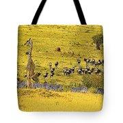Zebra, Wildebeest And Giraffe Tote Bag