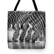 Zebras Drinking Tote Bag