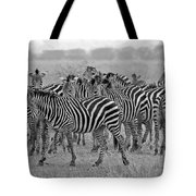 Zebras On The March Tote Bag