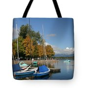 Zell Am See The Elements In Austria Tote Bag