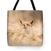 Zen Fox Series - Zen Fox 2.7 Tote Bag