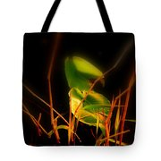 Zen Photography - Sunset Rays Tote Bag
