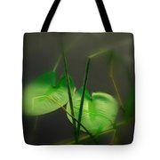 Zen Photography Iv Tote Bag