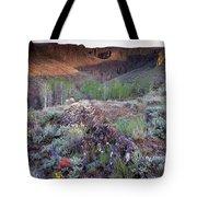 Zeno Canyon Tote Bag
