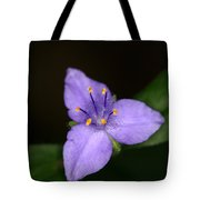 Zigzag Spiderwort Tote Bag