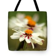Zinnia Named Zahara Starlight Rose Tote Bag