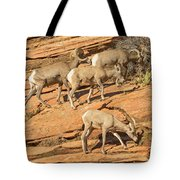 Zion Big Horn Sheep Tote Bag