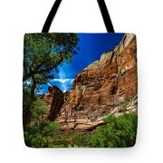 Zion Canyon Tote Bag