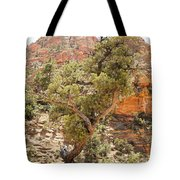 Zion Hike 1 View 1 Tote Bag