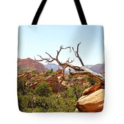 Zion Hike 1 View 4 Tote Bag