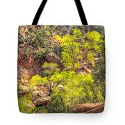 Zion National Park Small Tributary Of The Virgin River Tote Bag