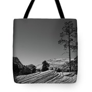 Zion Park Geology Texture Tote Bag