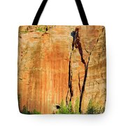 Zion Rock Wall Tote Bag