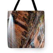 Zion Waterfall At Emerald Pools Tote Bag