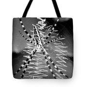 Zipper Spider - Black And White Tote Bag