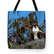 Zombie Osprey Crying For Brains Tote Bag