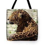 Zoo 2015 006 Tote Bag