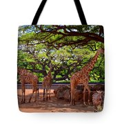 Zoo Giraffes And Zebras Tote Bag