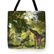 Zoo Landscape Tote Bag