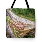Zoo1 Tote Bag