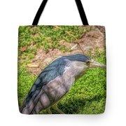 Zoo4 Tote Bag