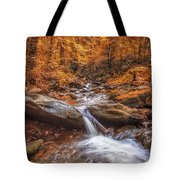 Amicalola Falls Tote Bag by Bernd Laeschke
