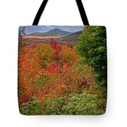 Autumn Beginnings In New Hampshire Tote Bag by Dan Sproul