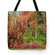 Autumn Colours In Great Smoky Mountains National Park Tote Bag
