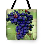 Blue Grape Bunches 6 Tote Bag