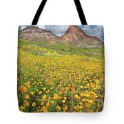 Boundary Cone Butte Tote Bag