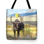 Bull Moose Tote Bag by Michael Chatt