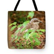 Bush Stone-curlew Tote Bag