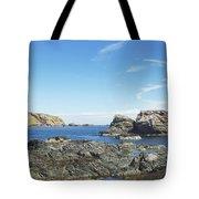 cliffs and coast at St. Abbs, Berwickshire Tote Bag
