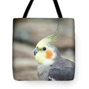Close Up Of A Cockatiel Tote Bag